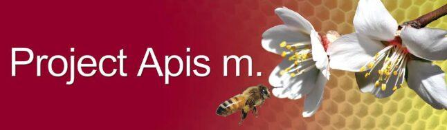 Project Apis m