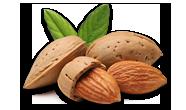 almonds-process
